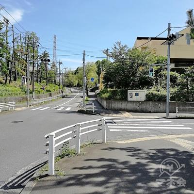 道に沿って歩き、2手に分かれる道を発見したら信号を渡り右に曲がります。