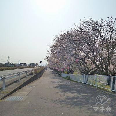 国道1号線の側道を450mほど東へ歩きます。
