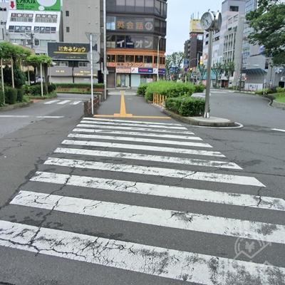 右に曲がるとロータリーを横断する横断歩道があるので渡ります。