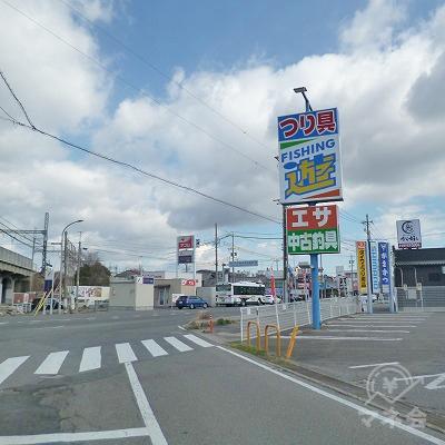 右手に釣具店がある交差点を右折します。