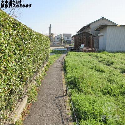 先の建物を越えた左側の道を進みます。途中、1m幅の農道のような道になります。