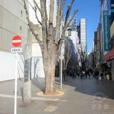 歩行者専用道モア2番街です。