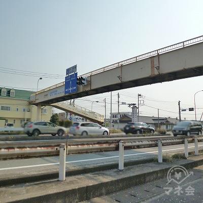 歩道橋で、国道の反対側へ渡って下さい。