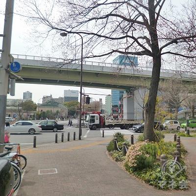 道中、名古屋高速2号東山線の高架をくぐります。