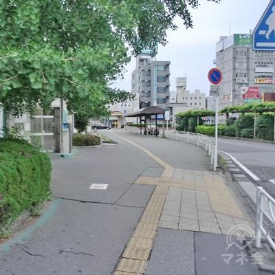銀杏松が左手に来たところで、右に曲がります。