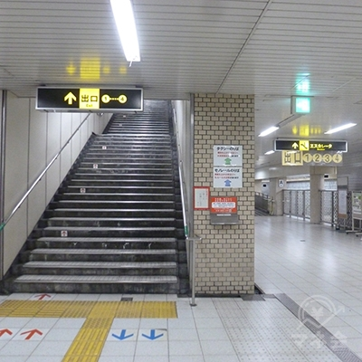 この階段を上がります。