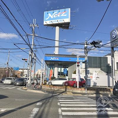 次に、横断歩道をネッツトヨタの方向へ渡ります。