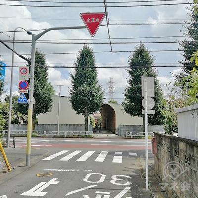 比較的大きい道路にぶつかったら、左に曲がります。