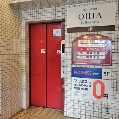 プロミスは5階です。エレベーターで5階に行きましょう。