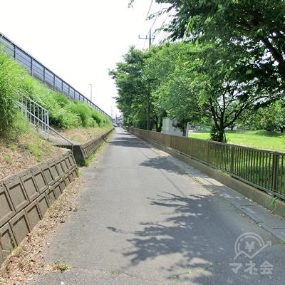 陸橋と公園の間の道を進みます。