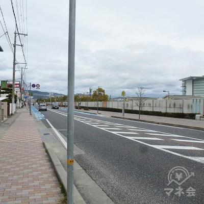 県道の向かい側・右手は阪神競馬場です。